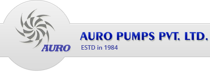 auro-pumps